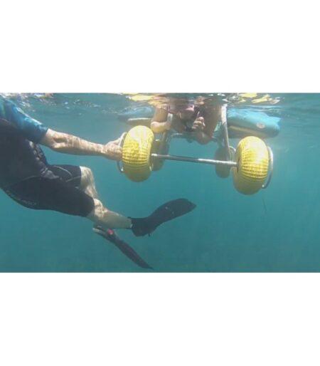 Silla de buceo Snorkel Enable ruedas