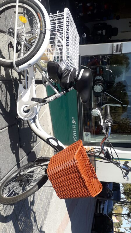 Triciclo terapéutico E Bike eléctrico