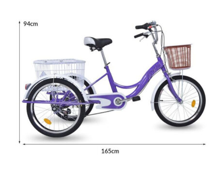 Triciclo terapéutico E Bike eléctrico. medidas 3