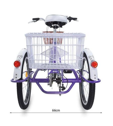 Triciclo terapéutico E Bike eléctrico. medidas 4